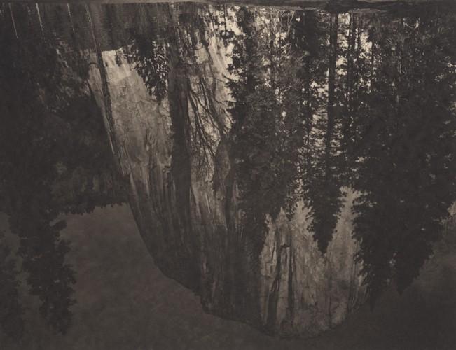 Yosemite #21