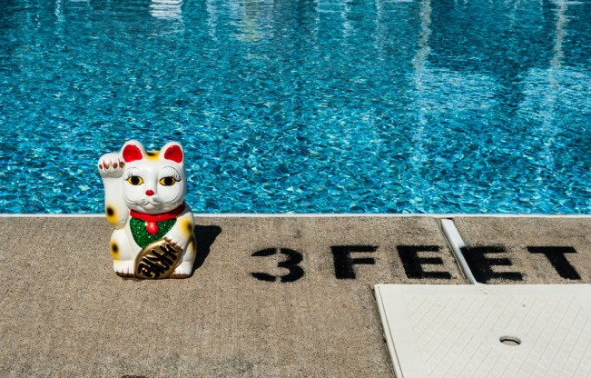 Lucky Cat goes to the swimming pool