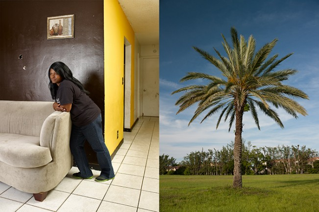 Anissa Hankerson and Palm Tree (Diptych)