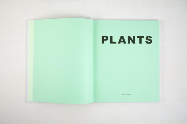PWP-034_PLANTS-0003