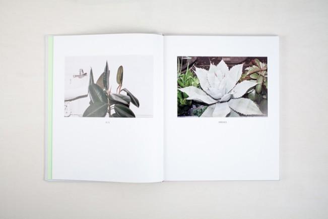 PWP-034_PLANTS-0010