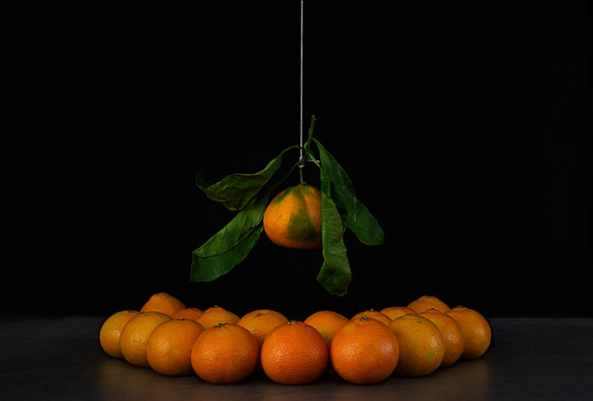 Orange on a String
