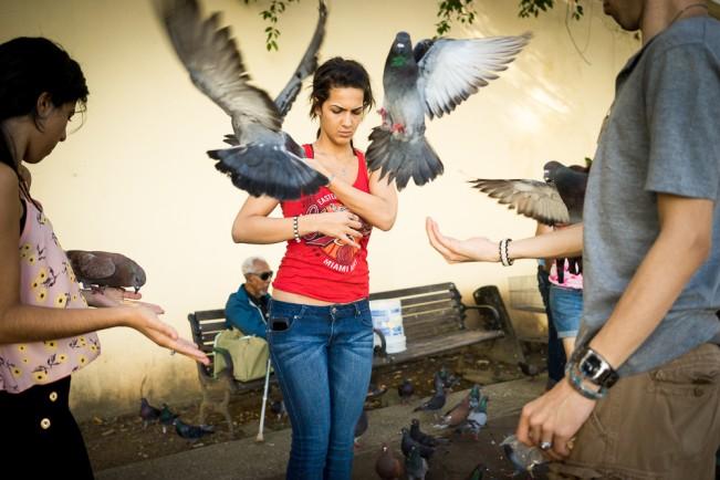 -Wings-_PaulKessel