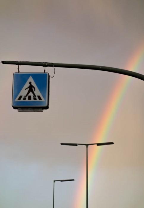 frauke_langguth_rainbow_warrior