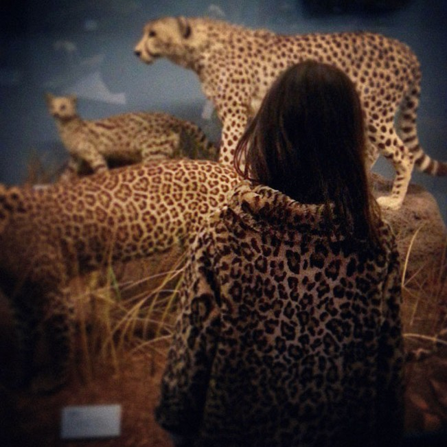 thomas_allen_natural_history