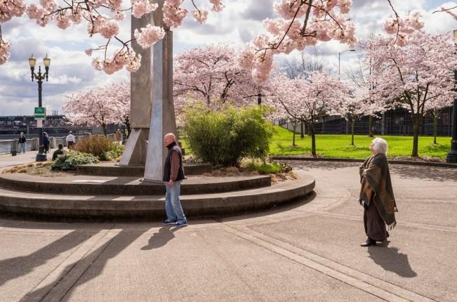 CherryBlossomsPeteCarolynSculptureLensScratch