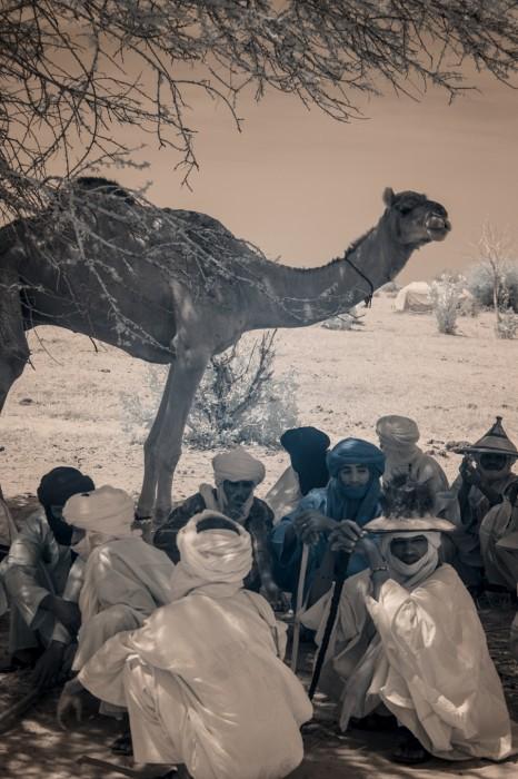 Niger_TerriGold-12