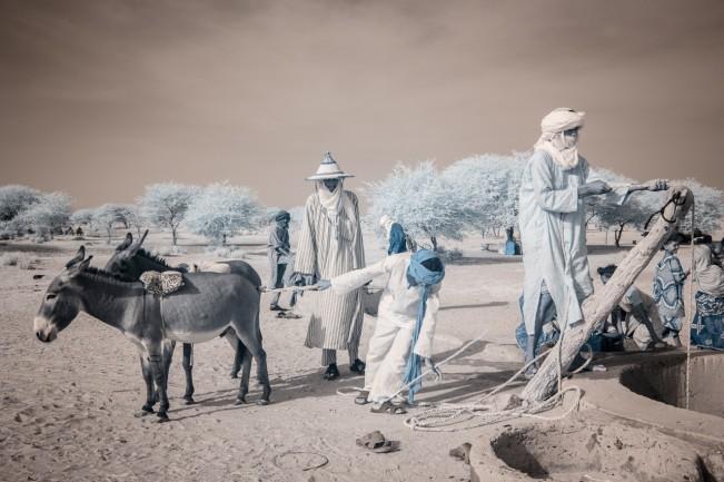 Niger_TerriGold-5