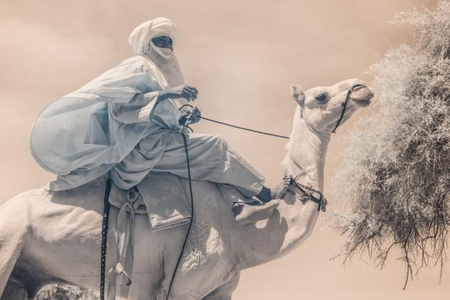 Niger_TerriGold-6