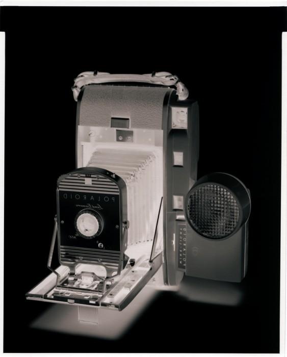 Polaroid 2014