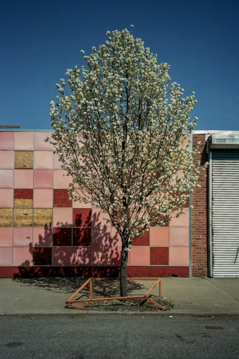eban_spring