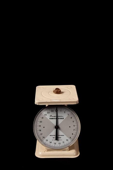 12. el peso de las cosas 12