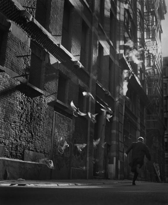 Alley1998_fr2.tif