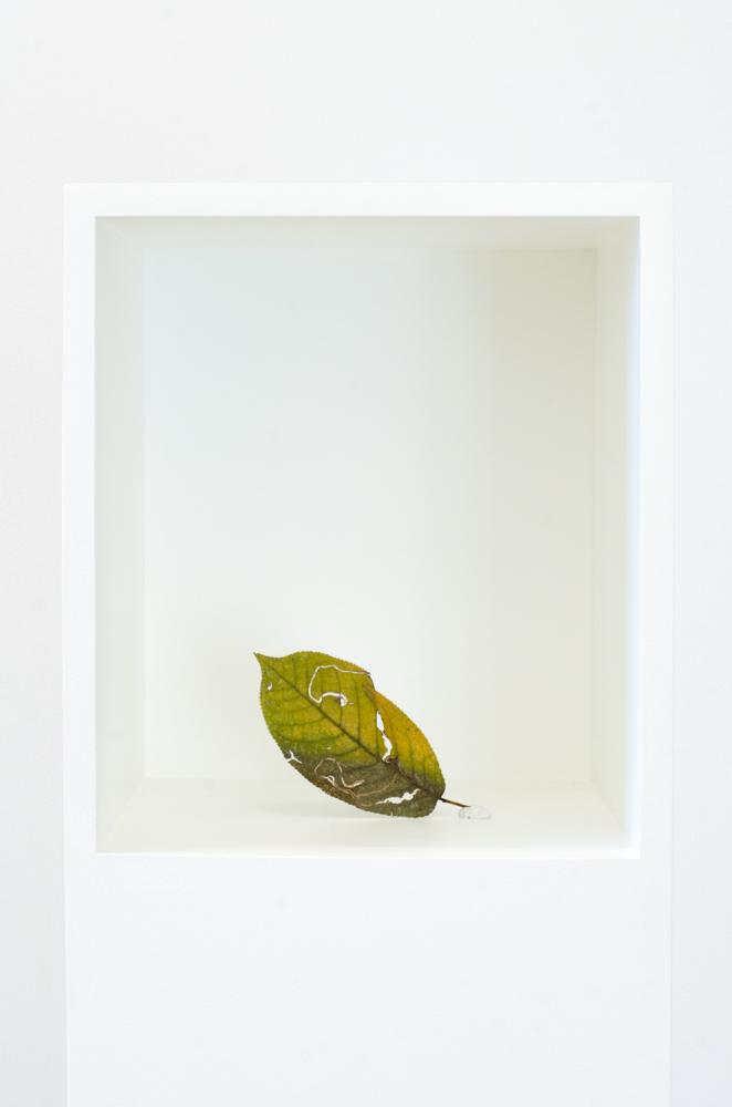 EF Kovacovsky-8 Blattkisten, Kunstmuseum Thun