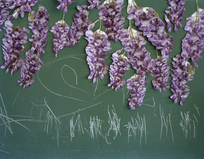 6-549_3_Wisteria-and-Chalk copy