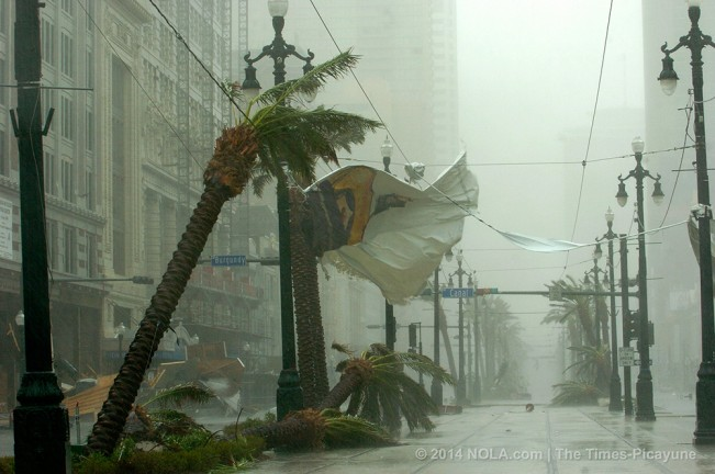 STAFF PHOTO BY TED JACKSON Palm trees bend and banners rip on Canal St. as Hurricane Katrina blows through New Orleans on Monday morning, August 29, 2005.