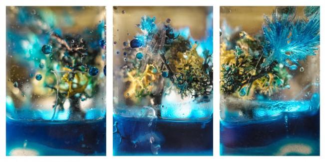 LizHickok_Blue_tree_Triptych_1000pix