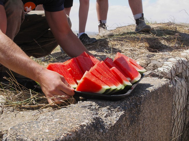 Watermelon in the Backyard of Syria