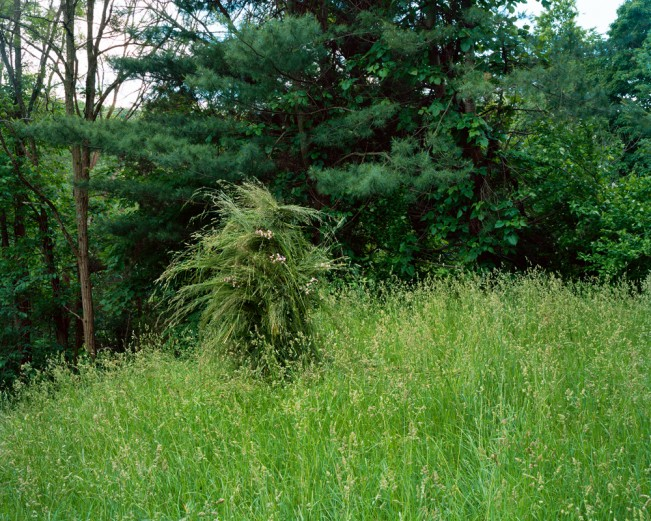 11. Ghillie Suit (Grass), 2013