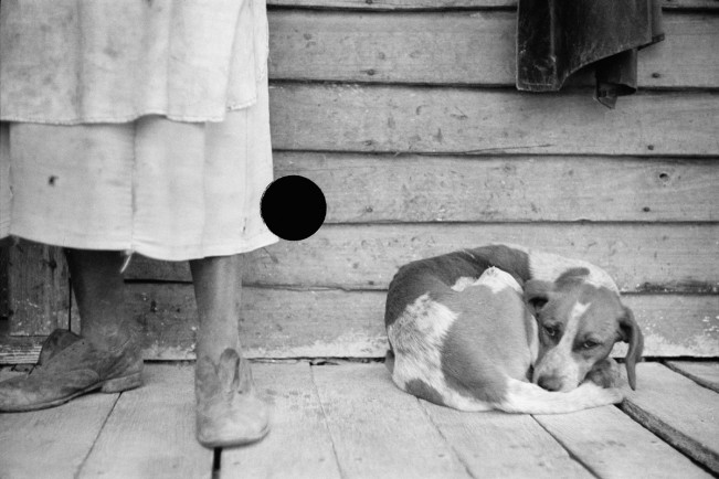 009 8a03148a woman porch dog