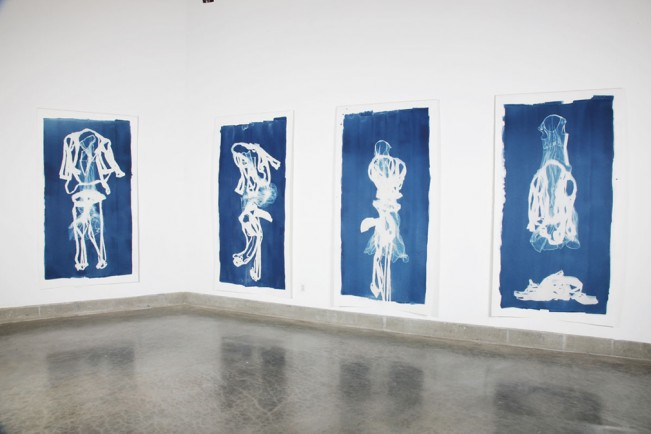 Left-Gallery-View-Cyanotypes 1010