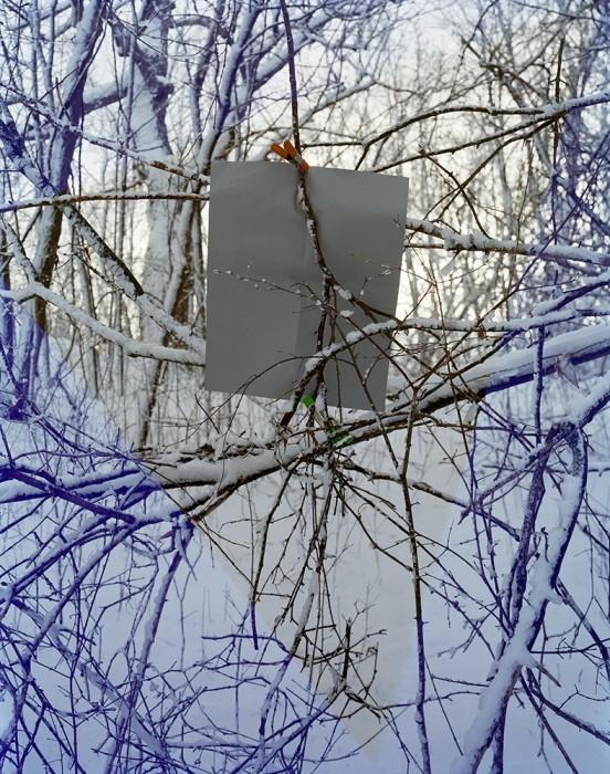 M1222UL Germantown tree leak