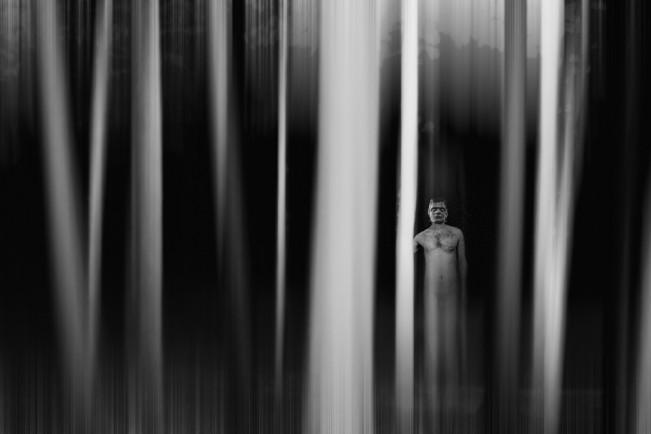 Frankenstein in woods