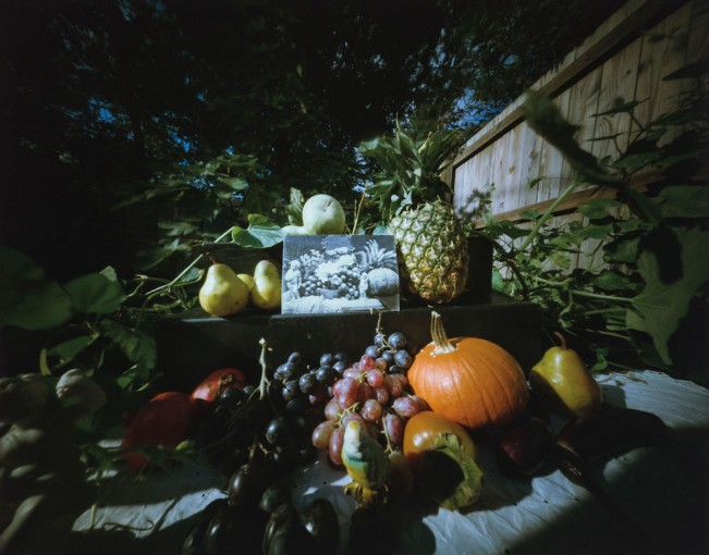 Fruits and Flowers – Homage to Roger Fenton #5, 10.28.1983