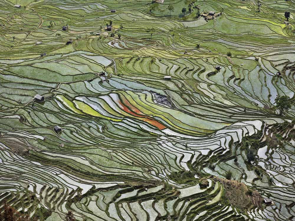 Burtynsky_Water_04_Rice Terrace_China