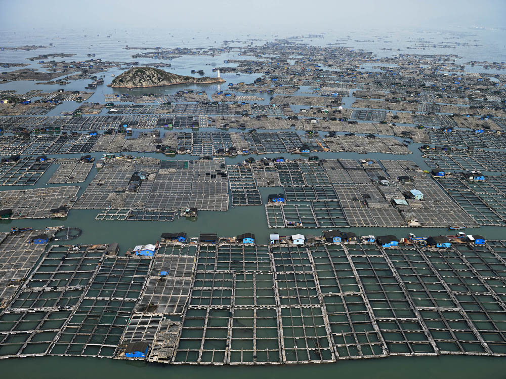 Burtynsky_Water_15_Marine Aquaculture_China