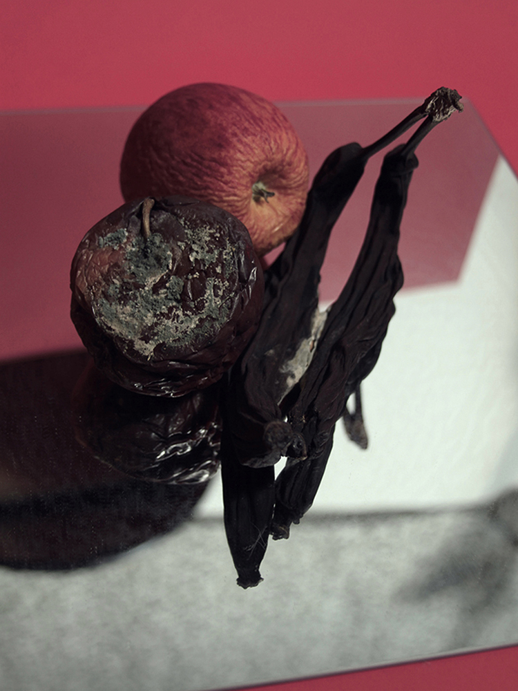 Delaney Allen 'Fruit From My Kitchen', 2012. Archival pigment print. Edition  5. 24 by 18 inches.