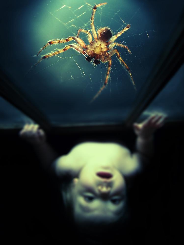 Spider_Door