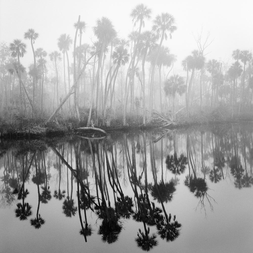 #7_Creek In Fog