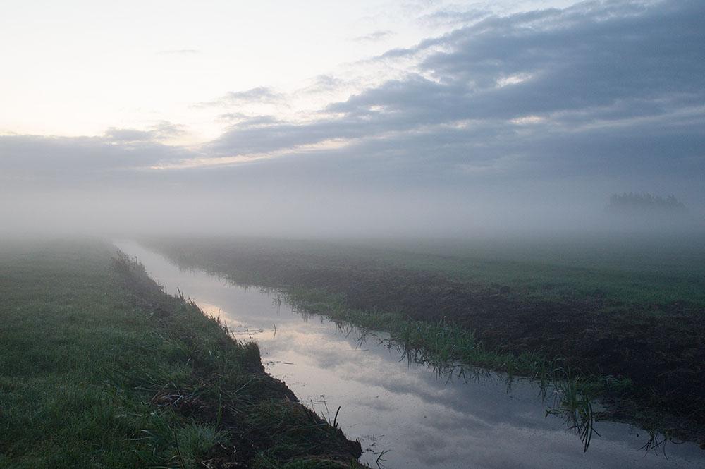 Polder Kamerik-Teylingens. De Beekhoeve, the Netherlands, September 2008, from the boek The Other Farm