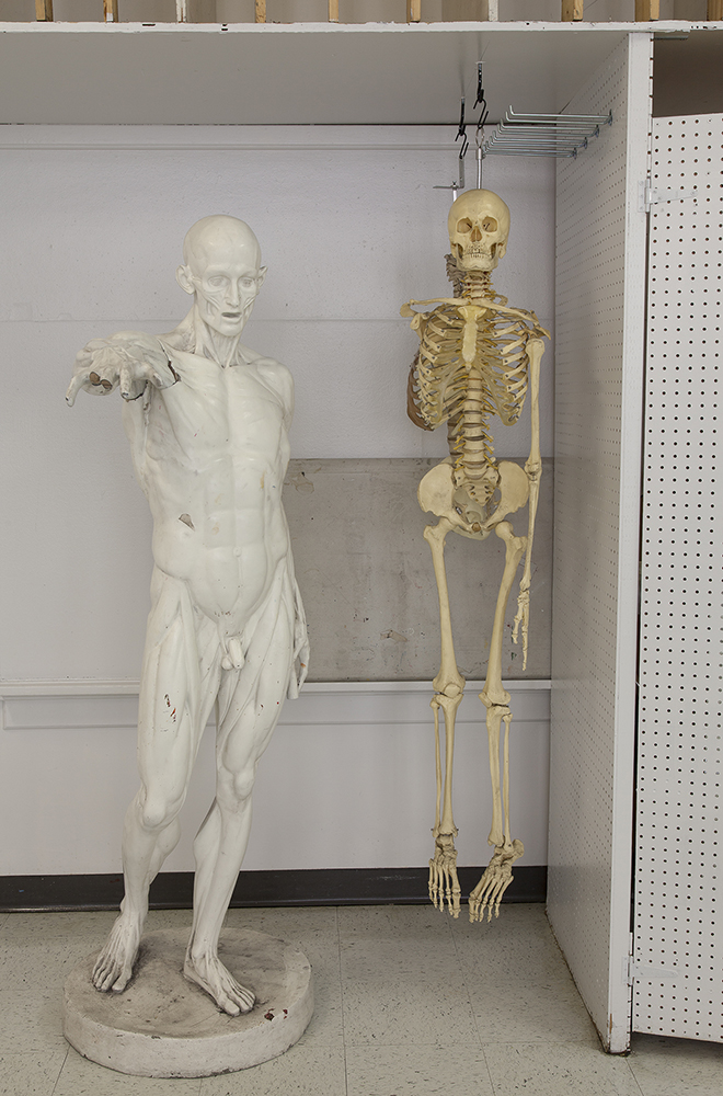 2_Russell_Anatomy Man and Skeleton, Boise State University 2014