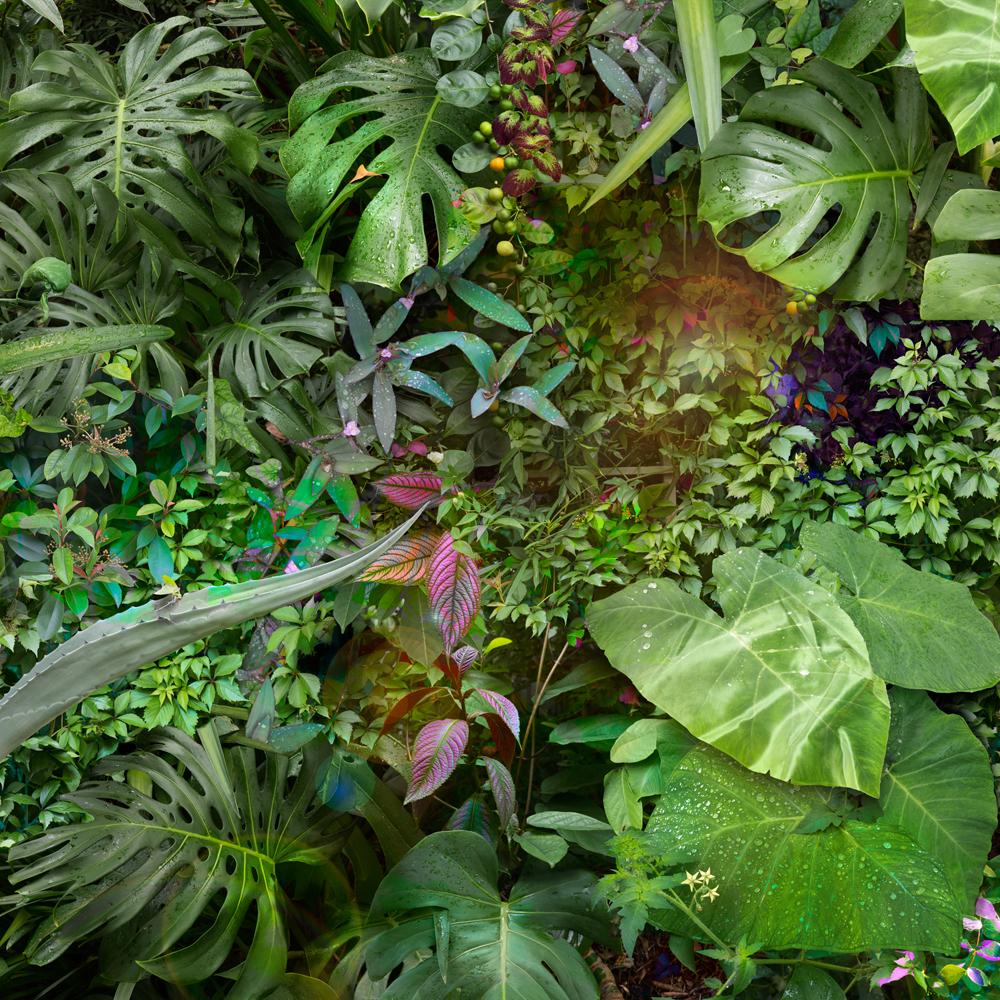 006Merrill_Garden