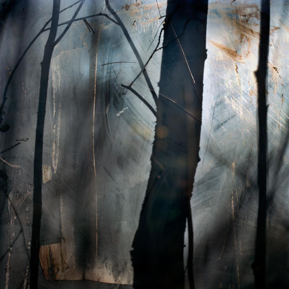 03_trees
