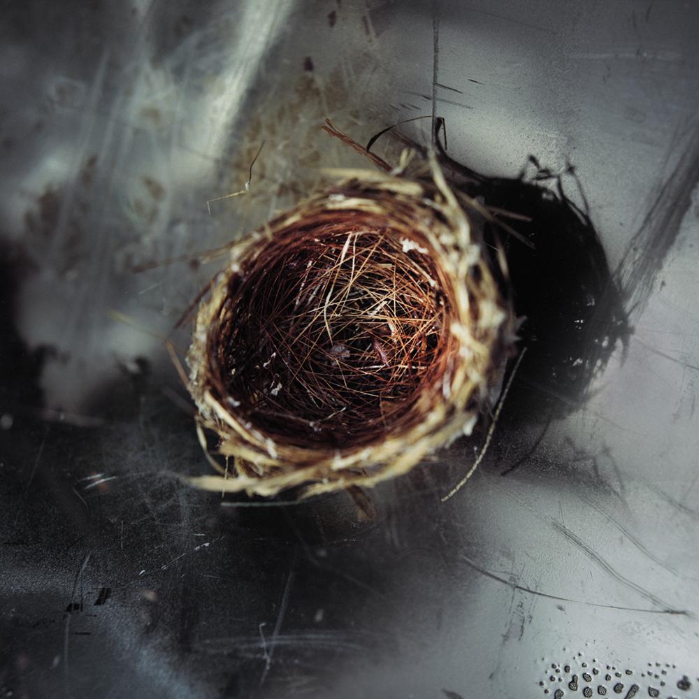 16_nest