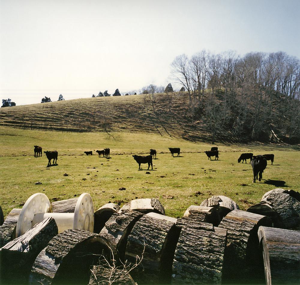 Carter County, TN 2007 (2)