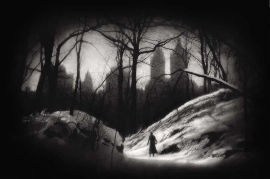 WinterCentralPark72