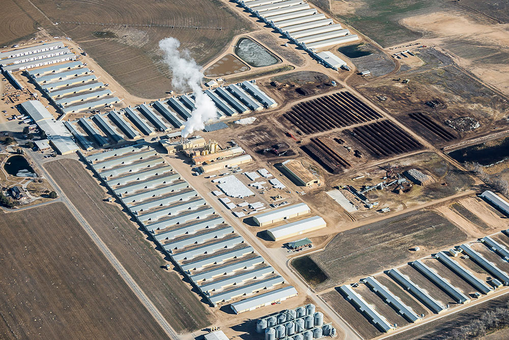 8_Chicken-Barns,-Platteville,-CO,-2016