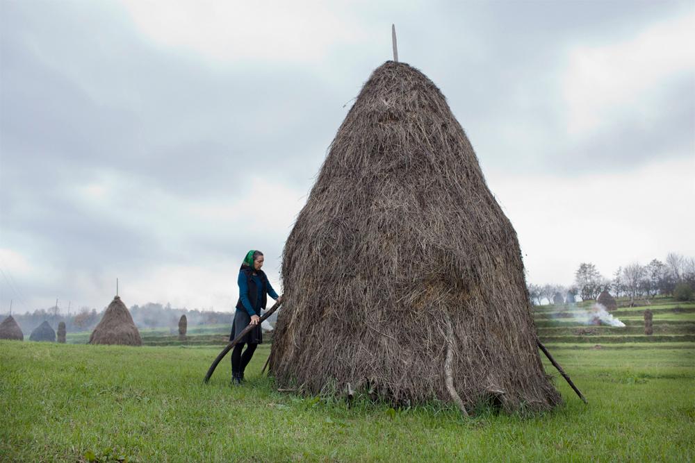 Matyas_Romania_Adjusting a Haystack