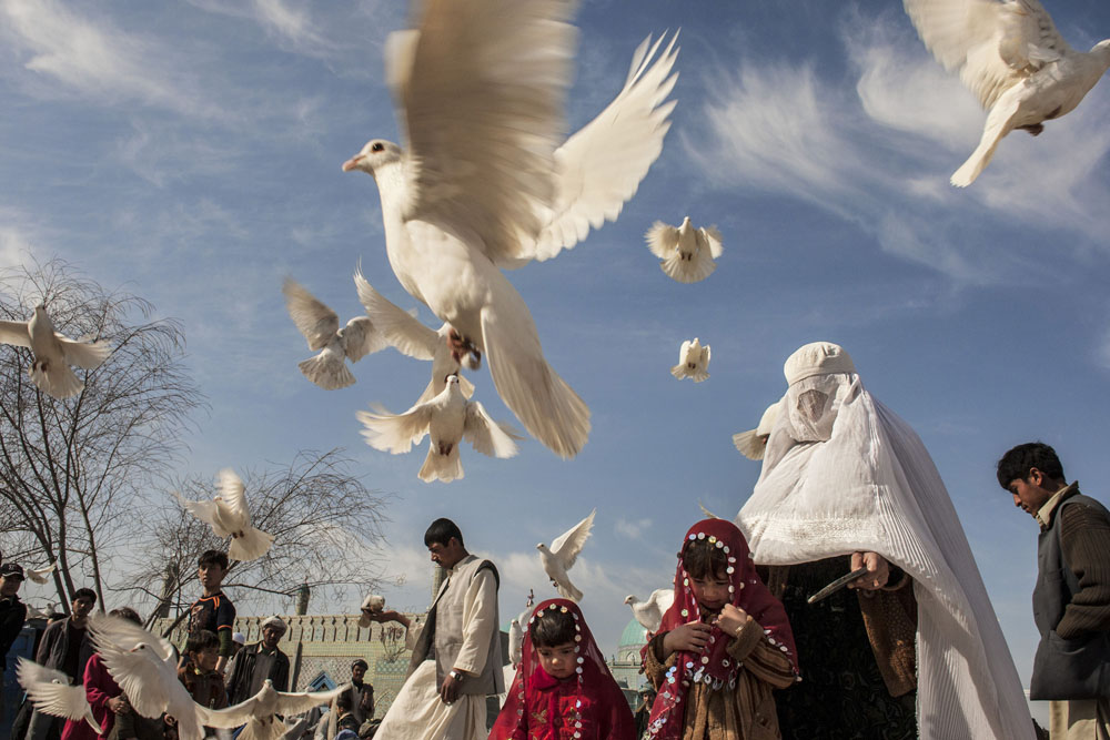 Mazar-e-Sharif, March 8, 2008. A woman in a white burqa enjoys an afternoon with her family feeding the white pigeons at the Blue Mosque.