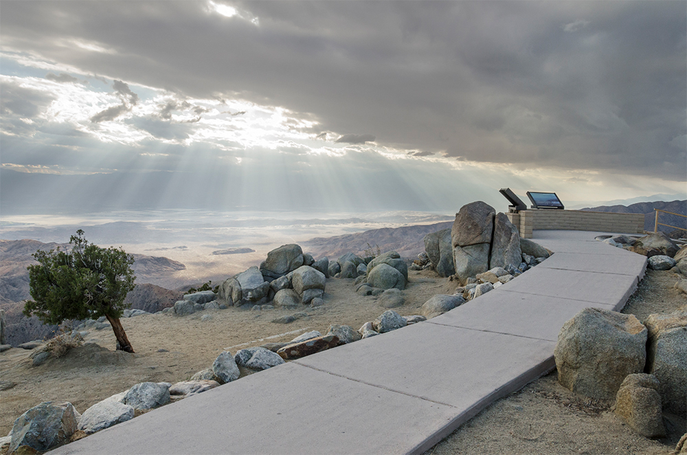 Joshua Tree overlook.
