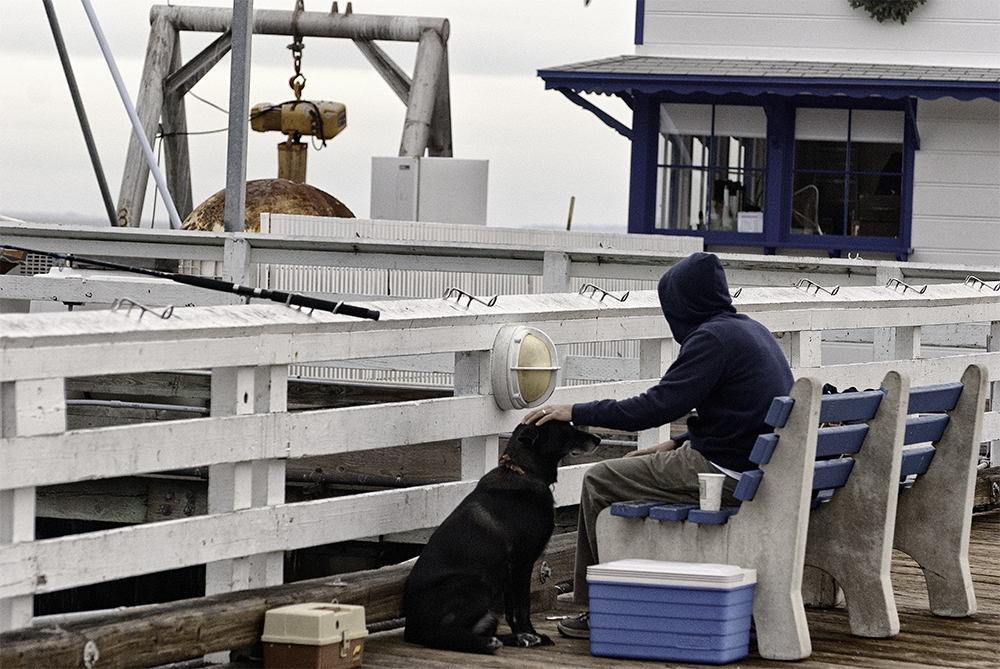 fishing-on-the-pier-with-his-dog-carl-shubs