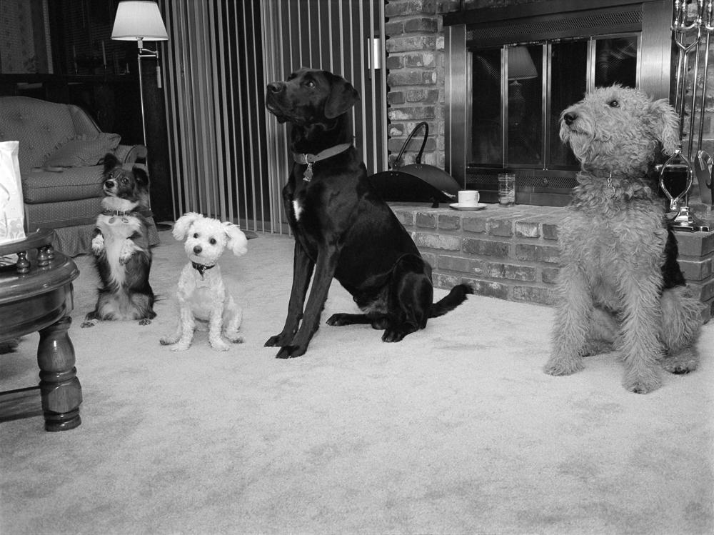 Sally, Wally, Boz and Hallie at Wally's birthday party, 11/89