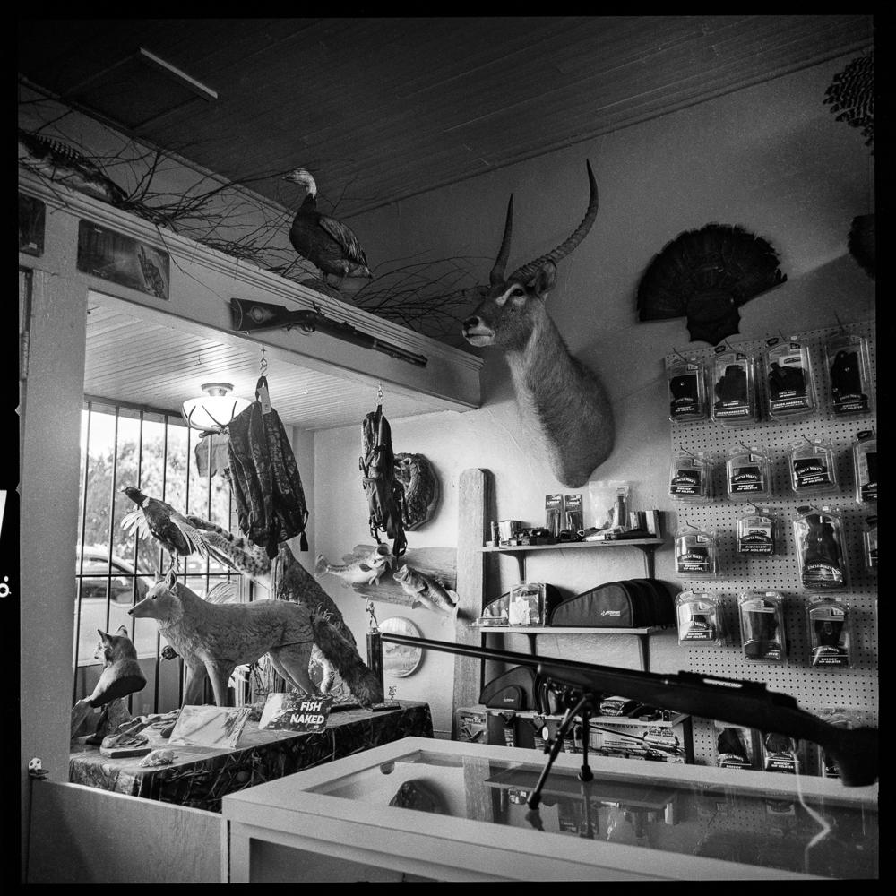 Gun Shop, Cleveland, Mississippi