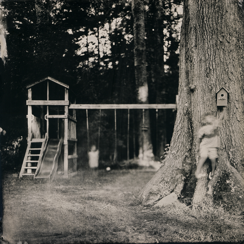 13_backyard_tintype