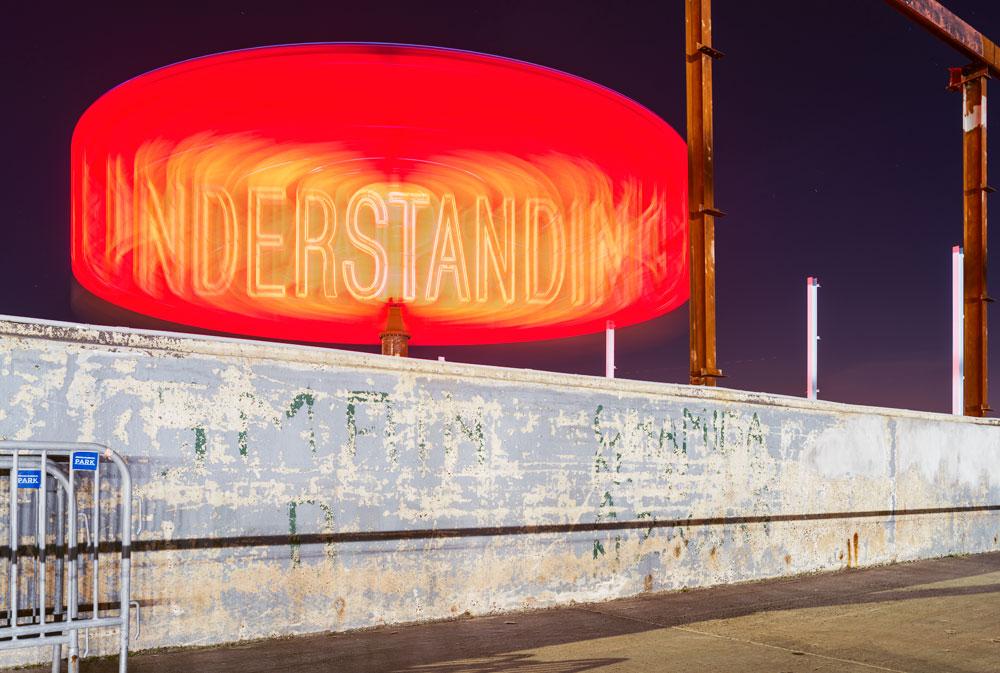 ALLEE_Understanding