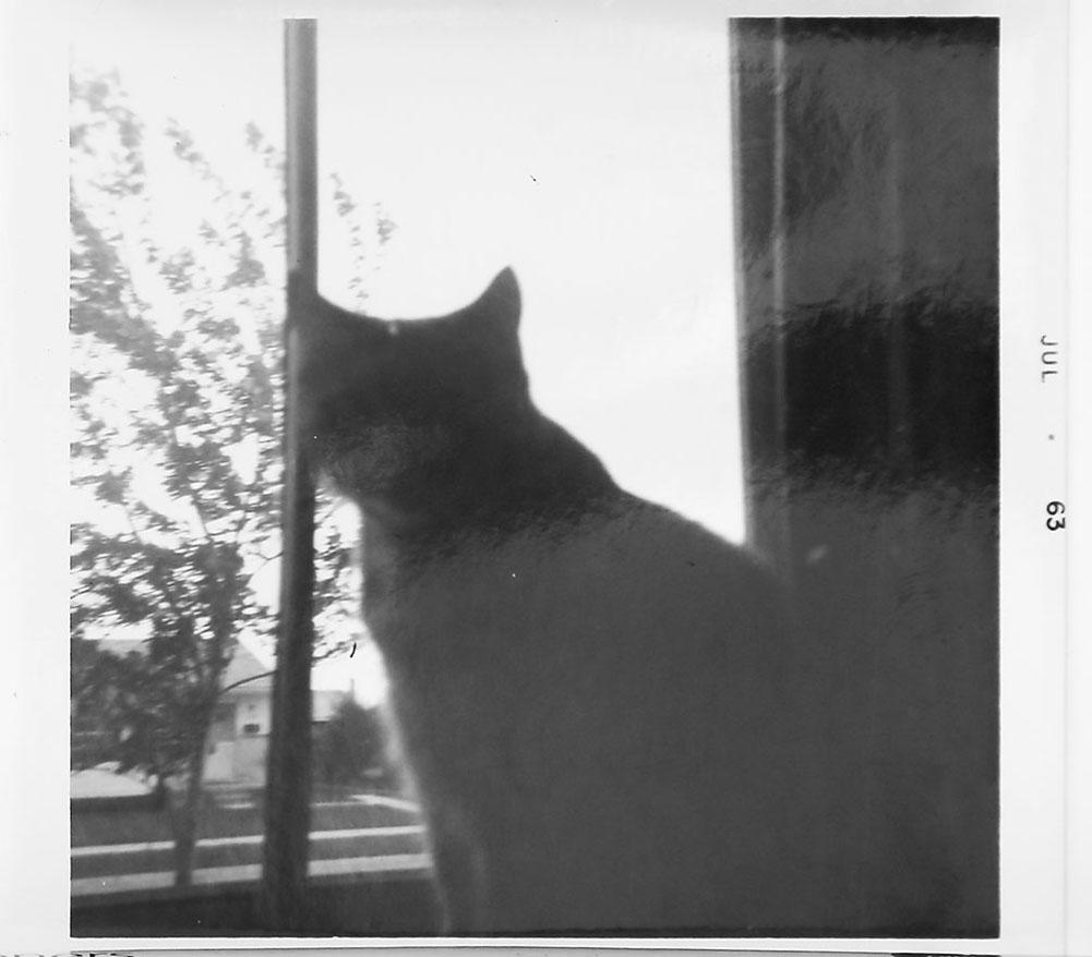 02 - Susie_1963_Douglas_Stockdale